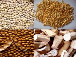 công nhận chất lượng thức ăn chăn nuôi nhập khẩu
